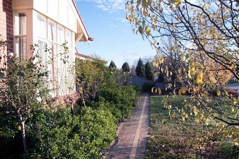 Before Botanica Mowing & Gardening Services